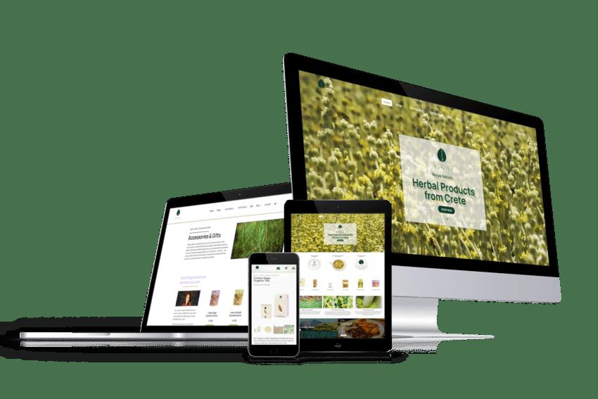 ennovate digital agency - tofillo website devices screenshot 01